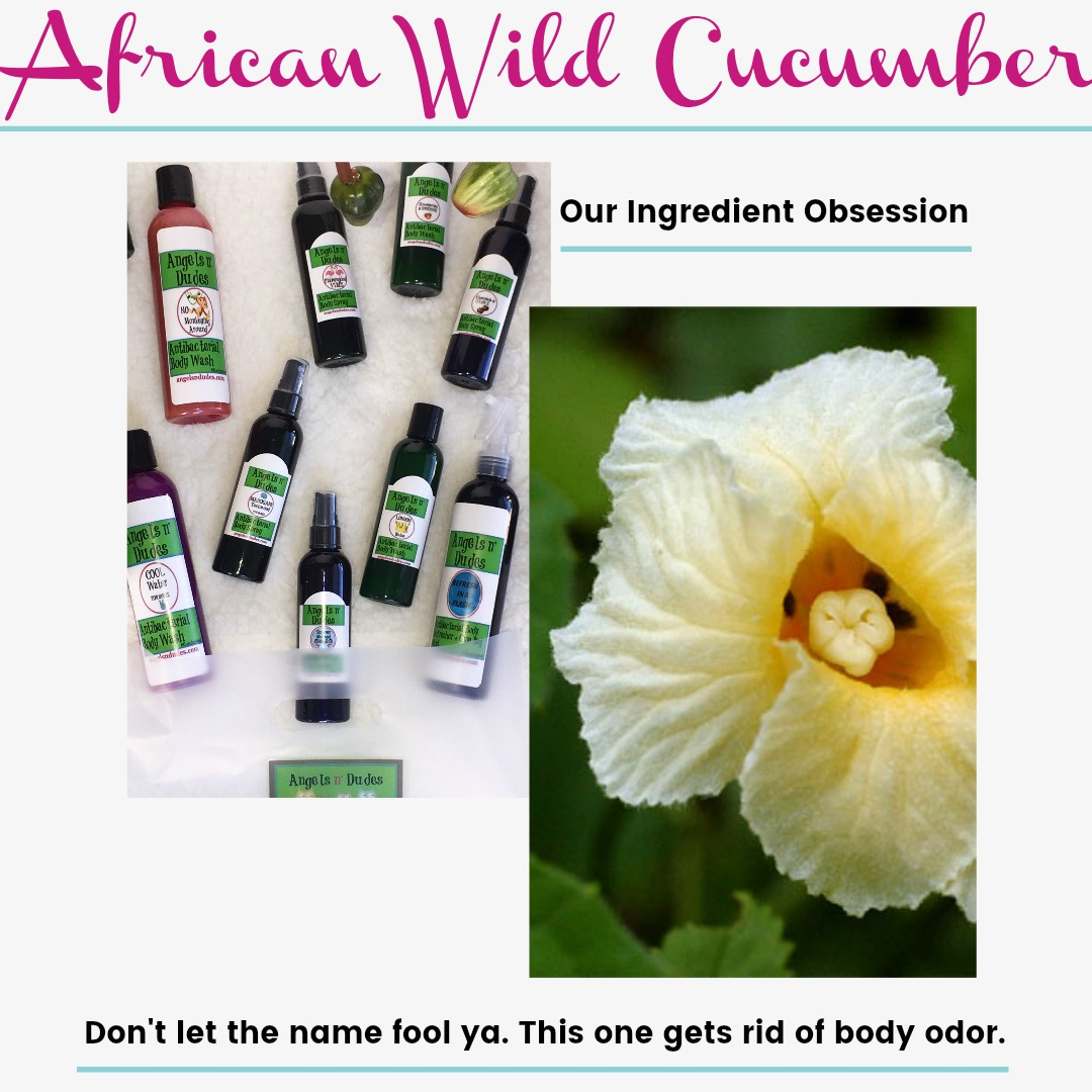African Wild Cucumber